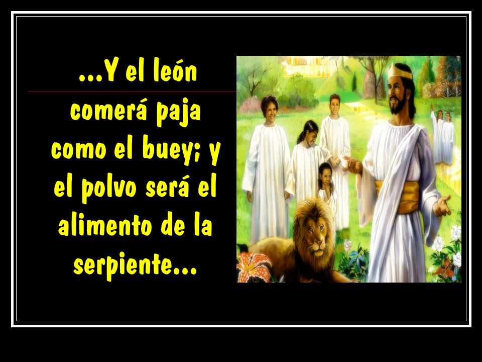 ...Y el león comerá paja como el buey; y el polvo será el alimento de la serpiente...