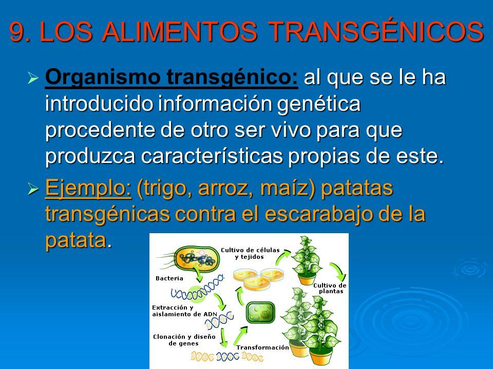 9. LOS ALIMENTOS TRANSGÉNICOS