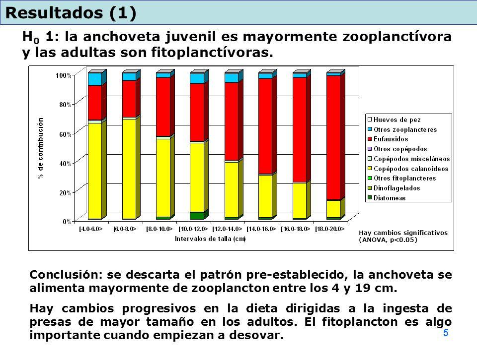 Resultados (1) H0 1: la anchoveta juvenil es mayormente zooplanctívora y las adultas son fitoplanctívoras.