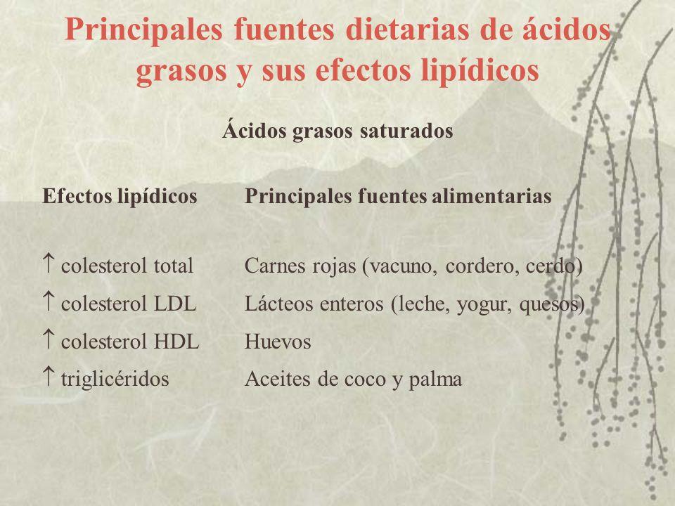 Principales fuentes dietarias de ácidos grasos y sus efectos lipídicos