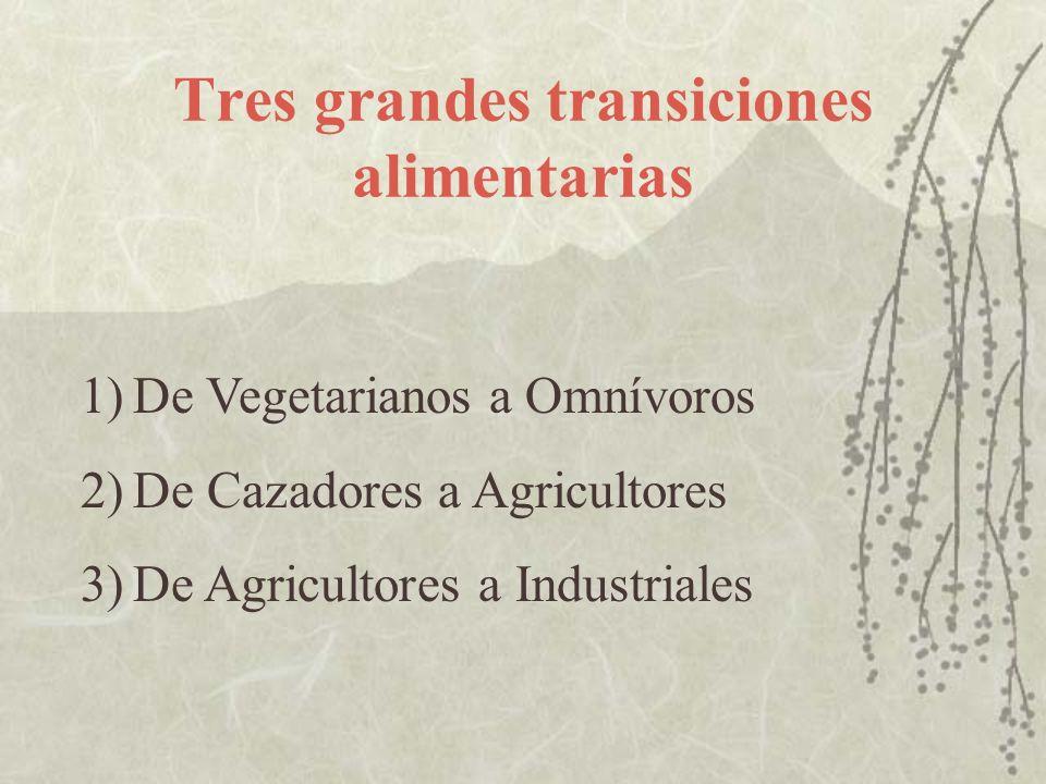 Tres grandes transiciones alimentarias