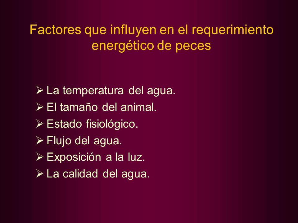 Factores que influyen en el requerimiento energético de peces