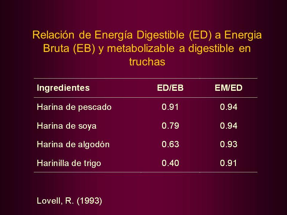 Relación de Energía Digestible (ED) a Energia Bruta (EB) y metabolizable a digestible en truchas