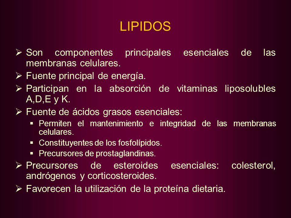 LIPIDOS Son componentes principales esenciales de las membranas celulares. Fuente principal de energía.