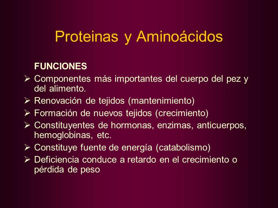 Proteinas y Aminoácidos