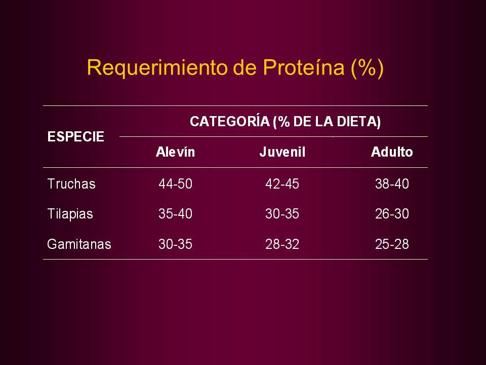 Requerimiento de Proteína (%)