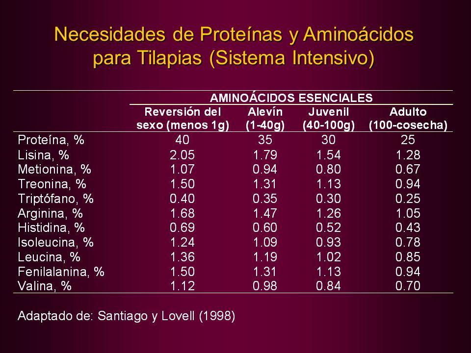 Necesidades de Proteínas y Aminoácidos para Tilapias (Sistema Intensivo)