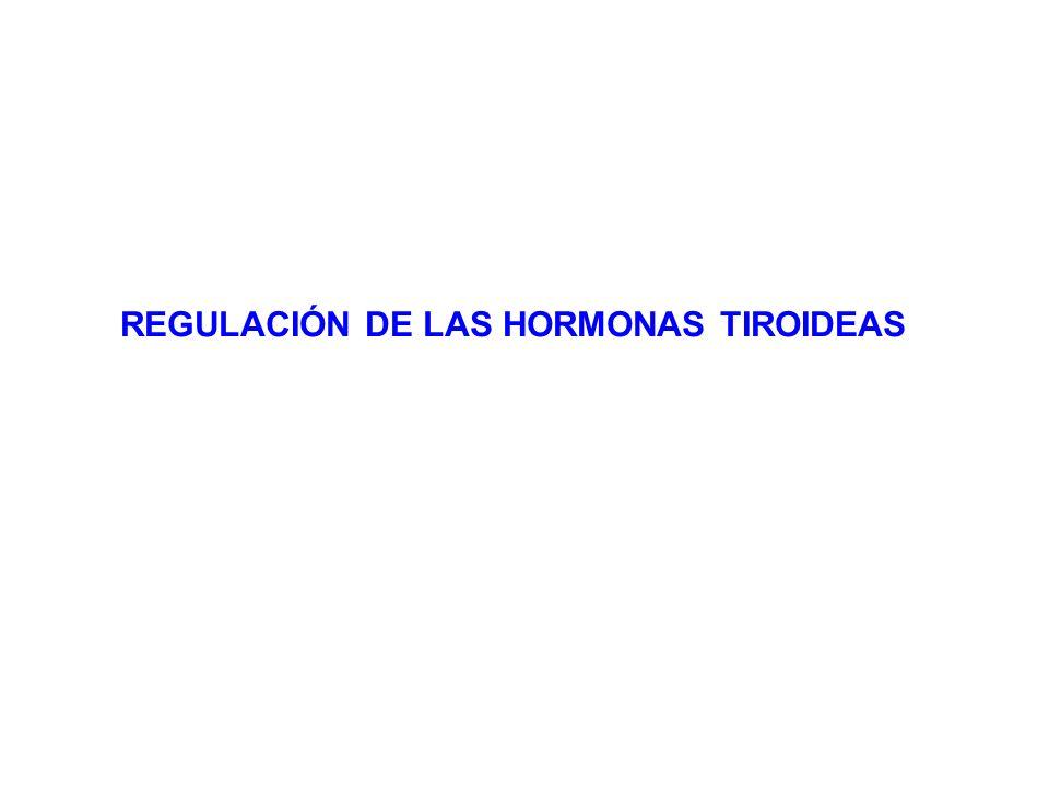 REGULACIÓN DE LAS HORMONAS TIROIDEAS