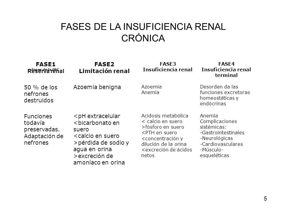 Insuficiencia renal terminal
