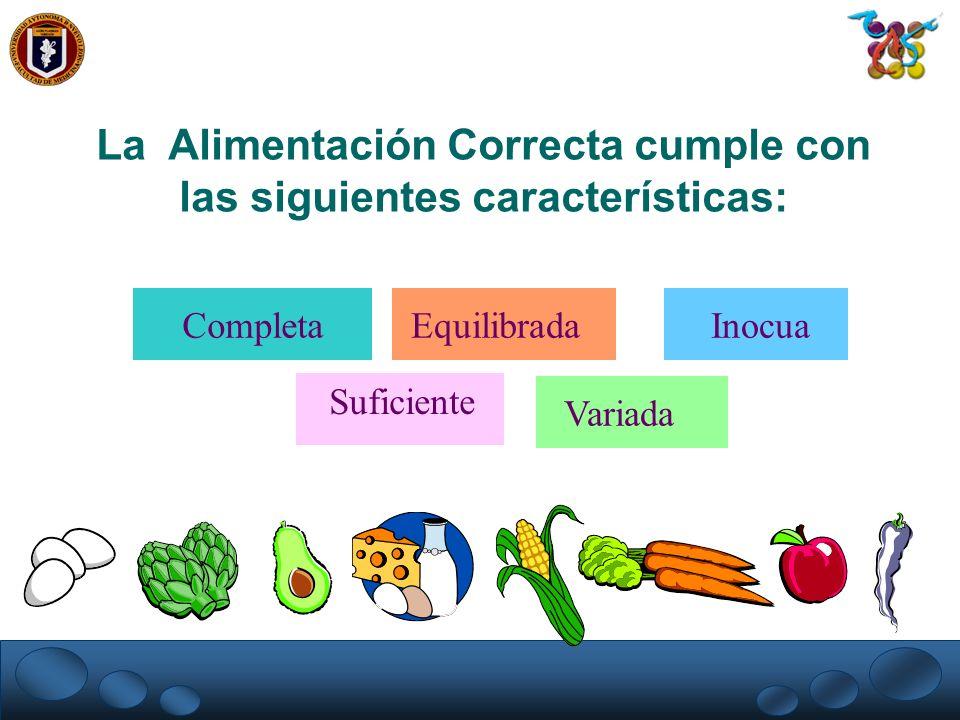 La Alimentación Correcta cumple con las siguientes características: