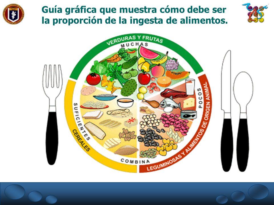 Guía gráfica que muestra cómo debe ser la proporción de la ingesta de alimentos.