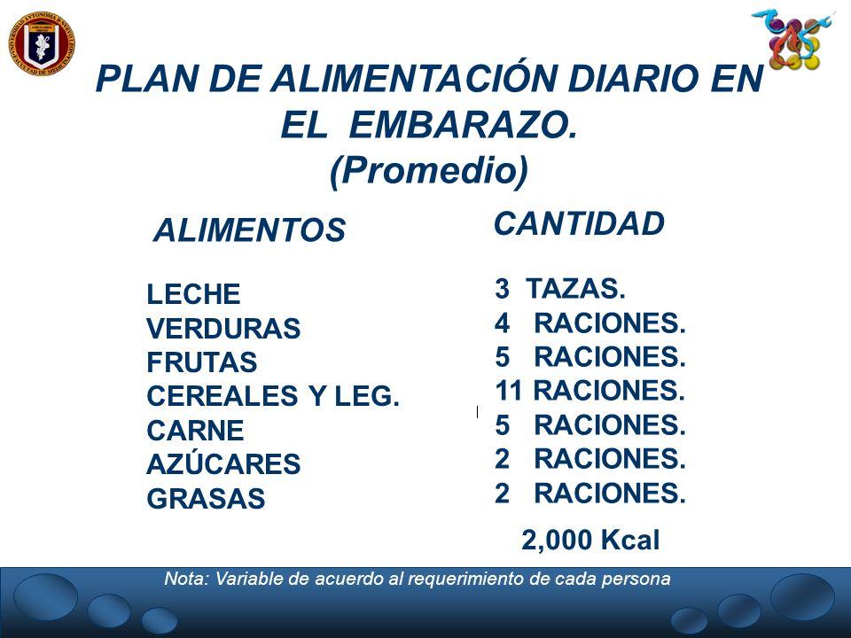 PLAN DE ALIMENTACIÓN DIARIO EN EL EMBARAZO.
