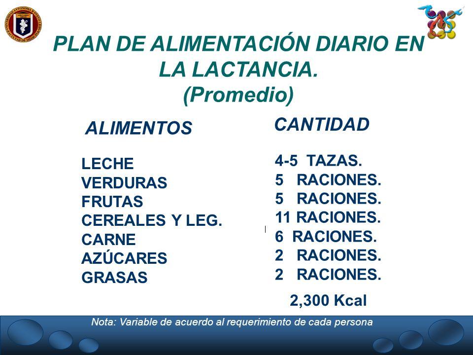 PLAN DE ALIMENTACIÓN DIARIO EN LA LACTANCIA.