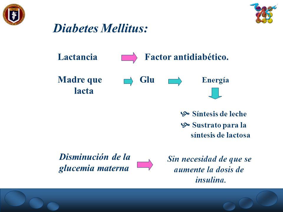 Diabetes Mellitus: Lactancia Factor antidiabético.