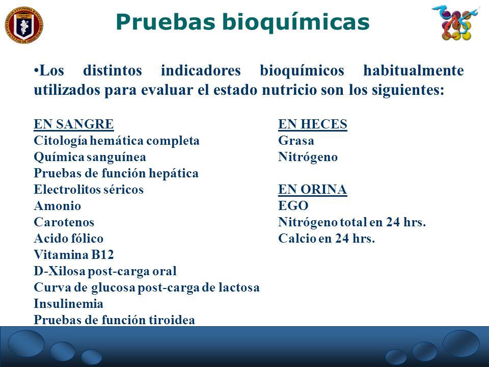Pruebas bioquímicas Los distintos indicadores bioquímicos habitualmente utilizados para evaluar el estado nutricio son los siguientes: