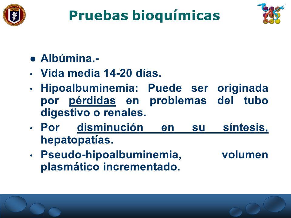 Pruebas bioquímicas Albúmina.- Vida media 14-20 días.
