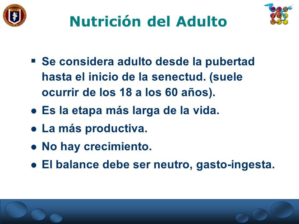 Nutrición del Adulto Se considera adulto desde la pubertad hasta el inicio de la senectud. (suele ocurrir de los 18 a los 60 años).