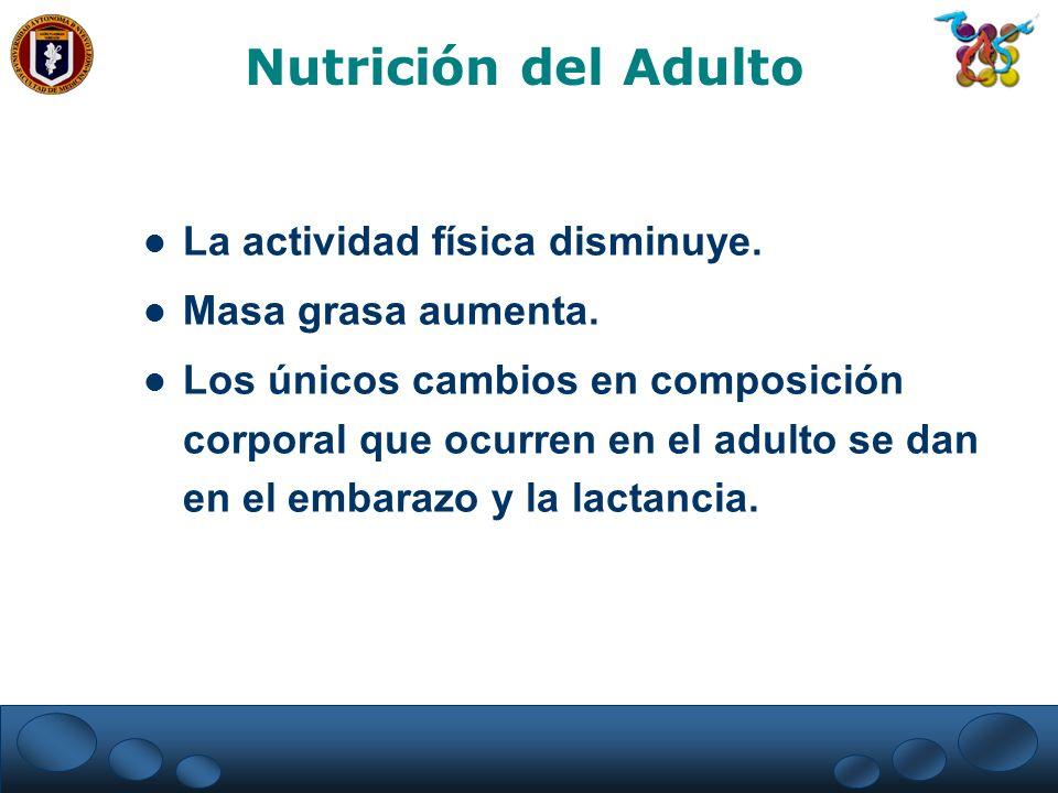 Nutrición del Adulto La actividad física disminuye.