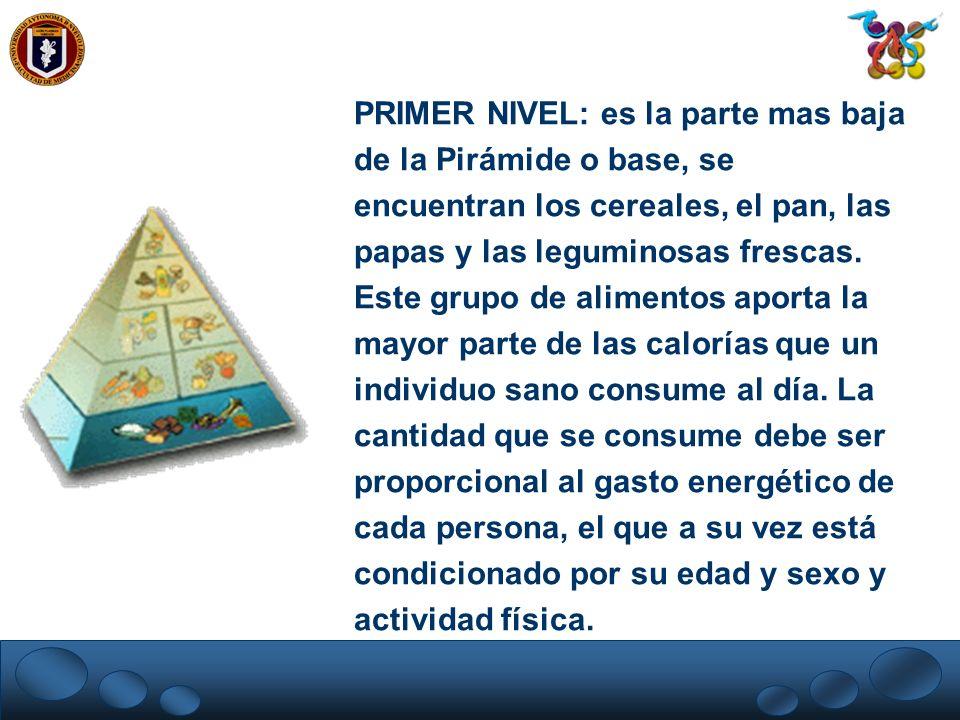 PRIMER NIVEL: es la parte mas baja de la Pirámide o base, se encuentran los cereales, el pan, las papas y las leguminosas frescas.
