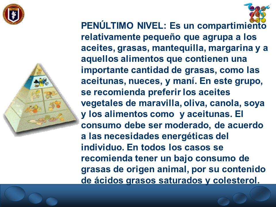 PENÚLTIMO NIVEL: Es un compartimiento relativamente pequeño que agrupa a los aceites, grasas, mantequilla, margarina y a aquellos alimentos que contienen una importante cantidad de grasas, como las aceitunas, nueces, y maní.