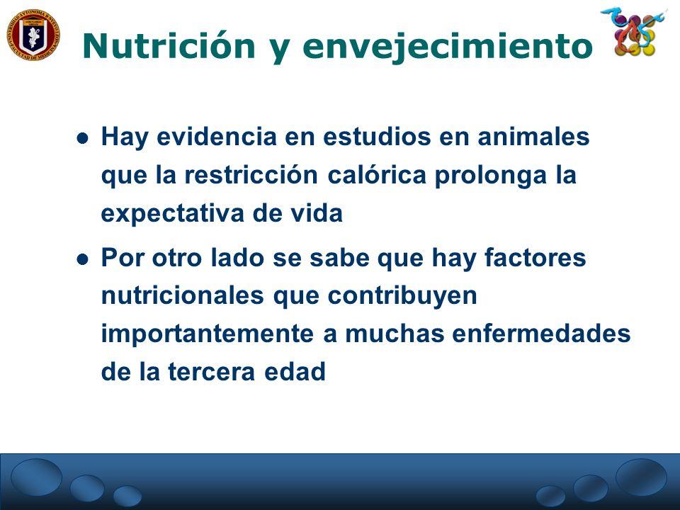 Nutrición y envejecimiento