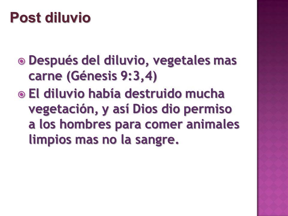 Post diluvio Después del diluvio, vegetales mas carne (Génesis 9:3,4)