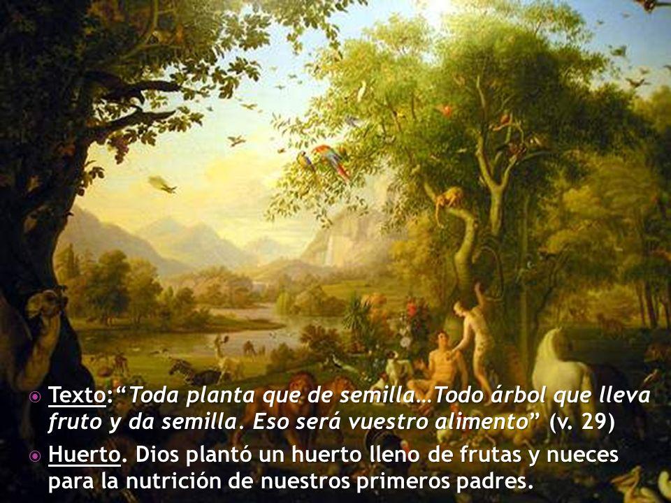 Texto: Toda planta que de semilla…Todo árbol que lleva fruto y da semilla. Eso será vuestro alimento (v. 29)