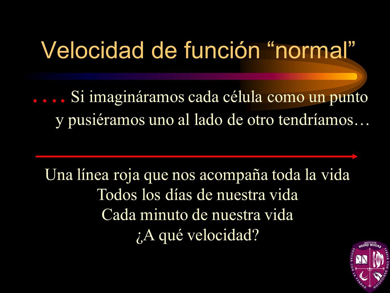 Velocidad de función normal