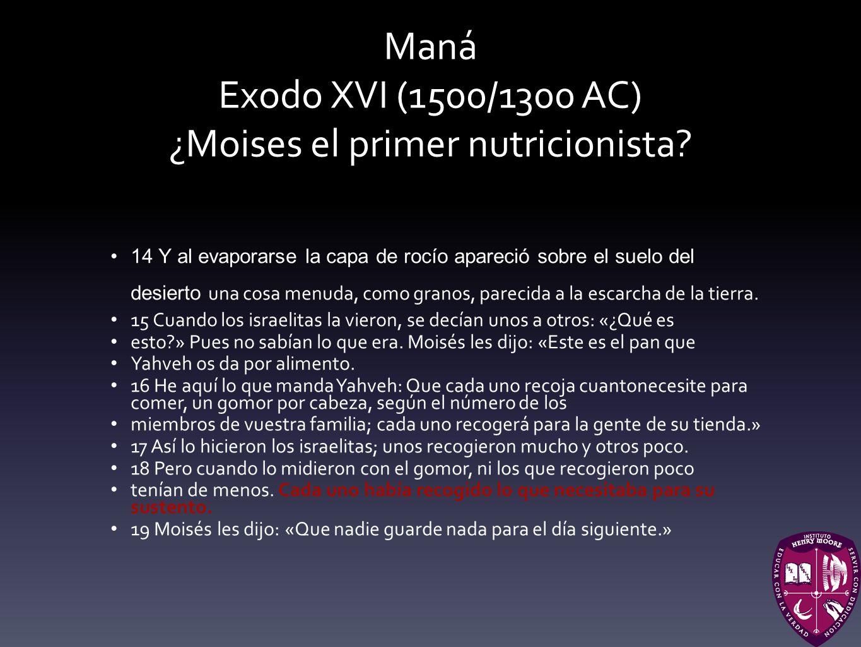 Maná Exodo XVI (1500/1300 AC) ¿Moises el primer nutricionista