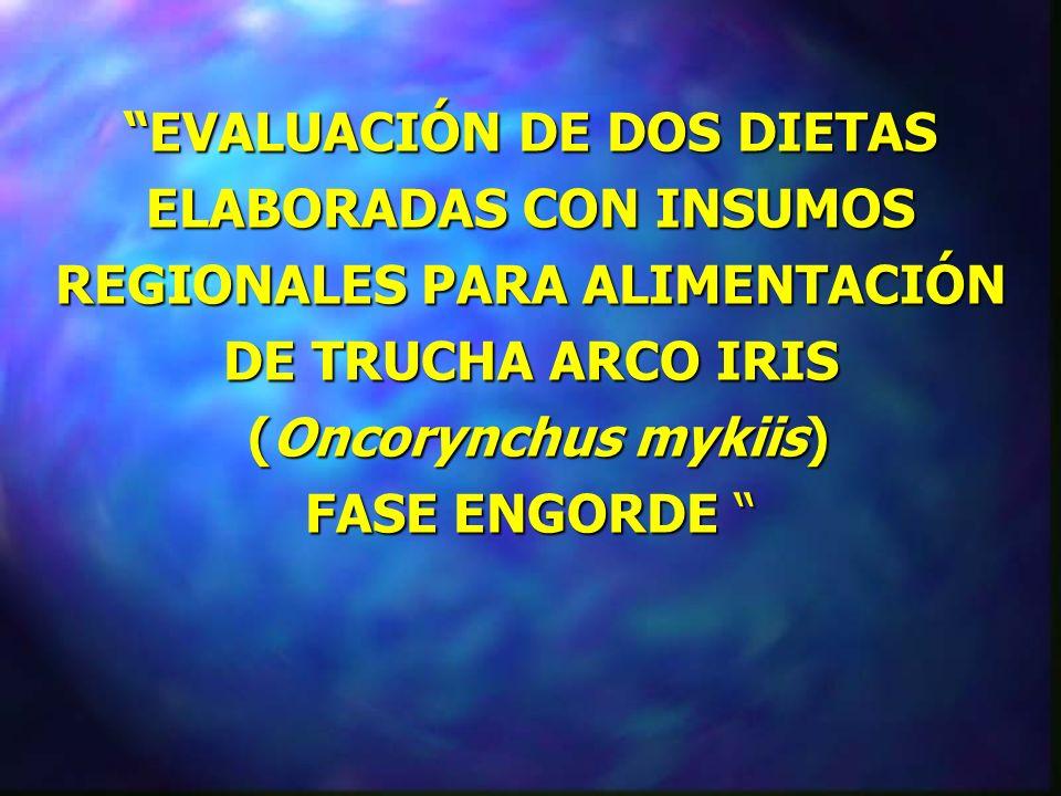 EVALUACIÓN DE DOS DIETAS ELABORADAS CON INSUMOS REGIONALES PARA ALIMENTACIÓN DE TRUCHA ARCO IRIS (Oncorynchus mykiis) FASE ENGORDE