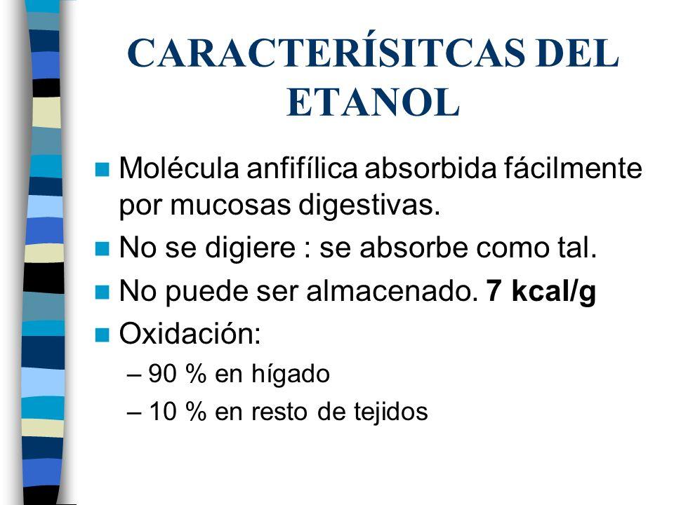 CARACTERÍSITCAS DEL ETANOL