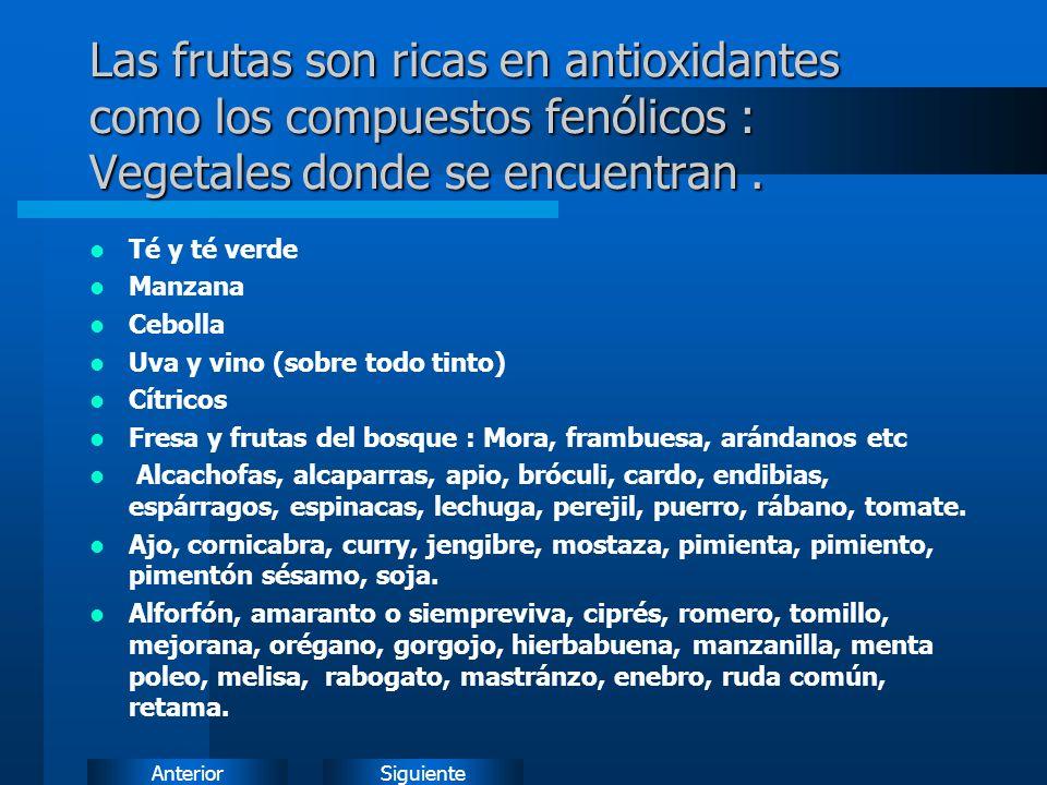 Las frutas son ricas en antioxidantes como los compuestos fenólicos : Vegetales donde se encuentran .
