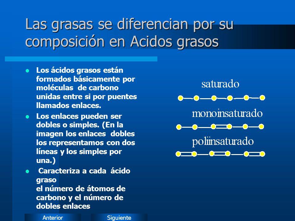 Las grasas se diferencian por su composición en Acidos grasos