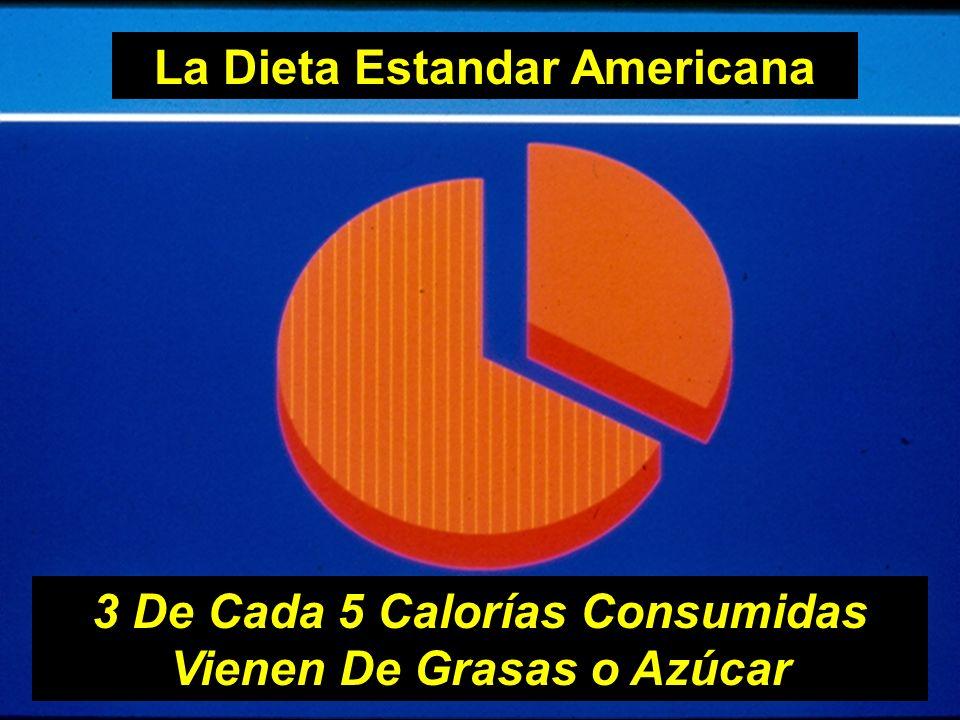 La Dieta Estandar Americana