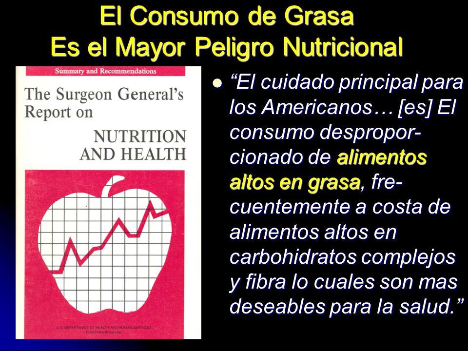 El Consumo de Grasa Es el Mayor Peligro Nutricional