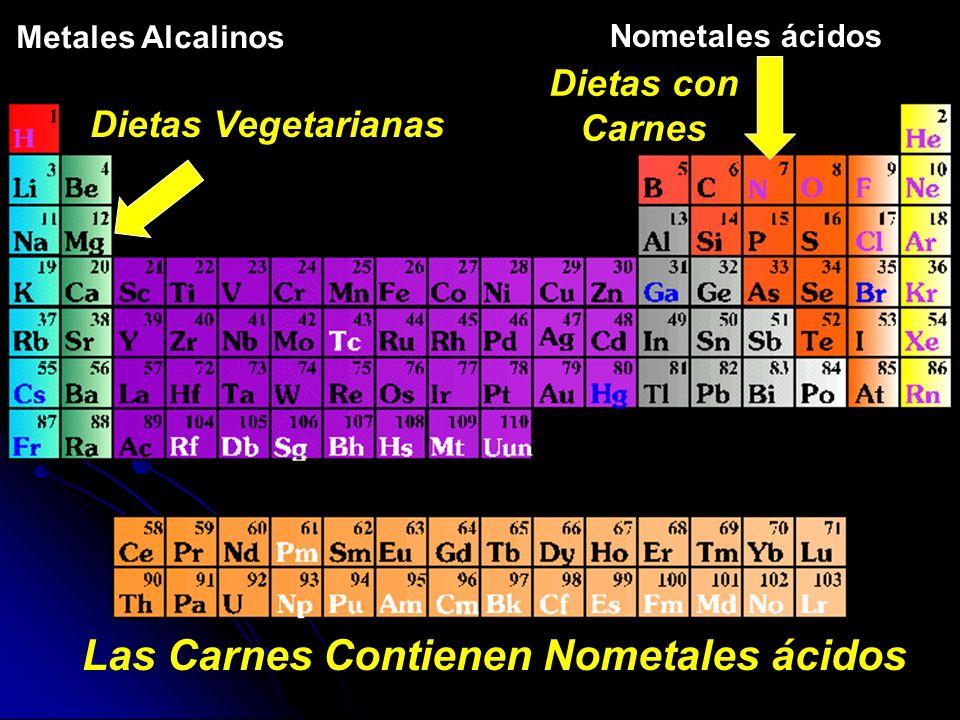 Las Carnes Contienen Nometales ácidos