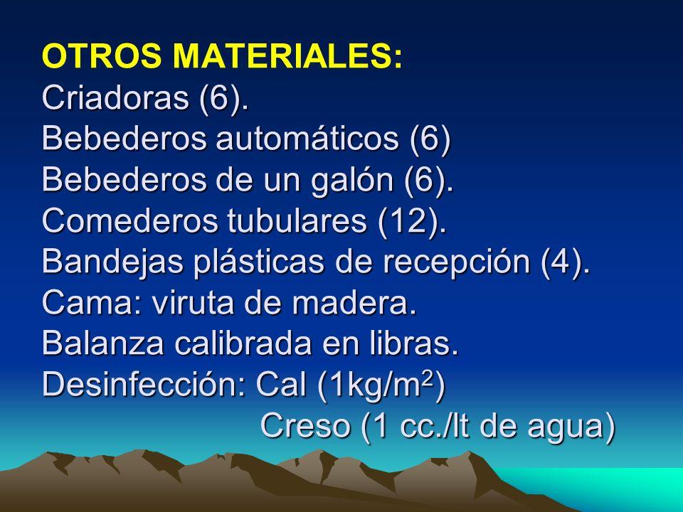 OTROS MATERIALES: Criadoras (6)