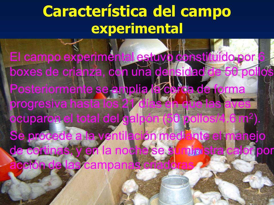 Característica del campo experimental
