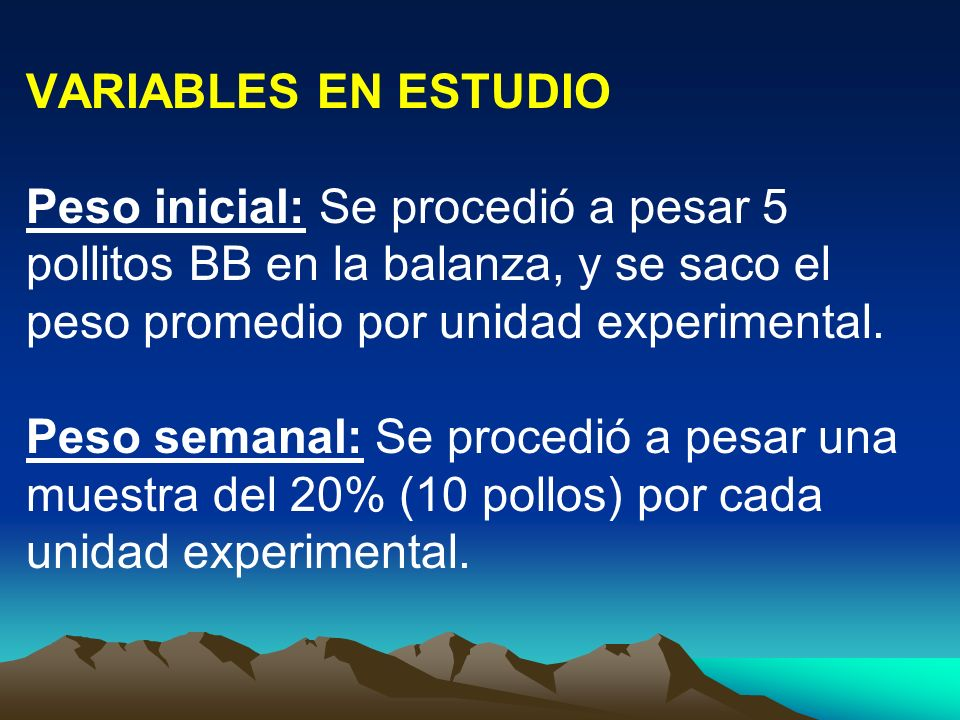 VARIABLES EN ESTUDIO Peso inicial: Se procedió a pesar 5 pollitos BB en la balanza, y se saco el peso promedio por unidad experimental.