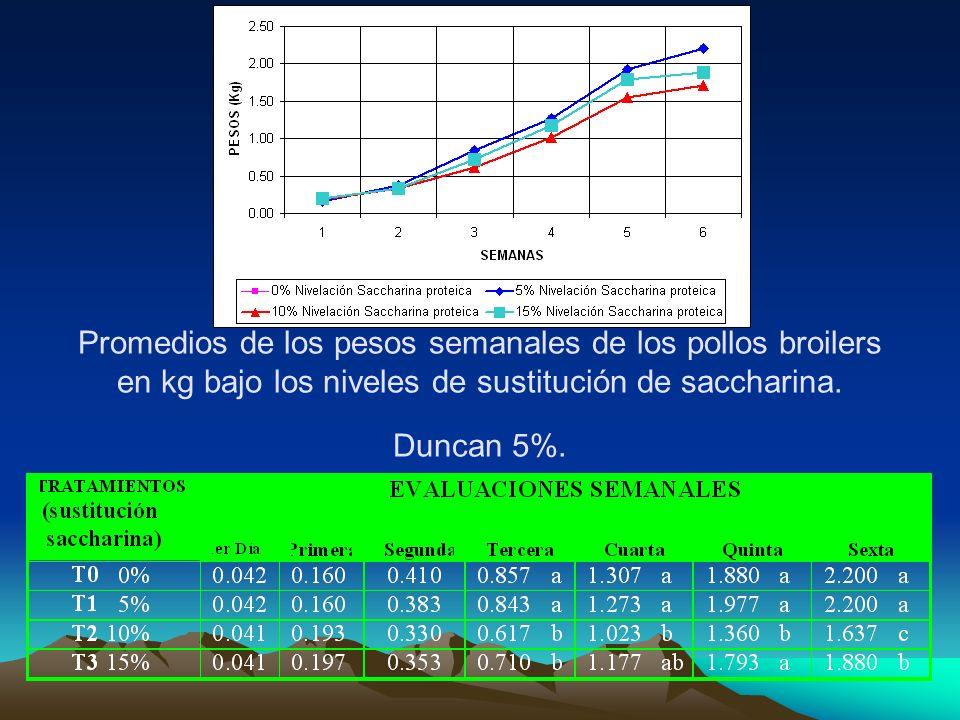 Promedios de los pesos semanales de los pollos broilers en kg bajo los niveles de sustitución de saccharina.
