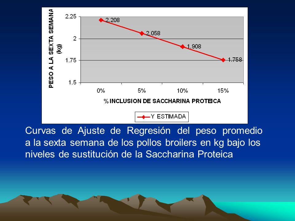 Curvas de Ajuste de Regresión del peso promedio a la sexta semana de los pollos broilers en kg bajo los niveles de sustitución de la Saccharina Proteica