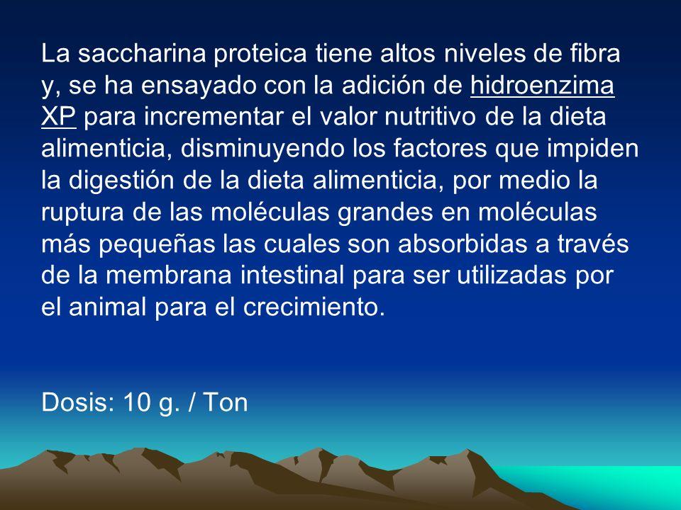 La saccharina proteica tiene altos niveles de fibra y, se ha ensayado con la adición de hidroenzima XP para incrementar el valor nutritivo de la dieta alimenticia, disminuyendo los factores que impiden la digestión de la dieta alimenticia, por medio la ruptura de las moléculas grandes en moléculas más pequeñas las cuales son absorbidas a través de la membrana intestinal para ser utilizadas por el animal para el crecimiento.
