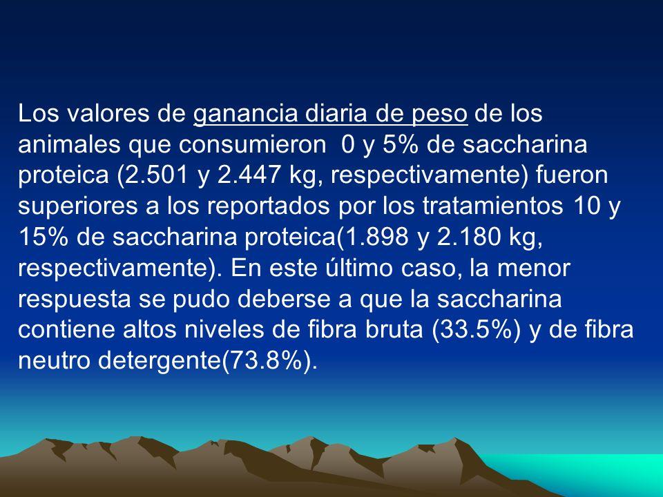 Los valores de ganancia diaria de peso de los animales que consumieron 0 y 5% de saccharina proteica (2.501 y 2.447 kg, respectivamente) fueron superiores a los reportados por los tratamientos 10 y 15% de saccharina proteica(1.898 y 2.180 kg, respectivamente).