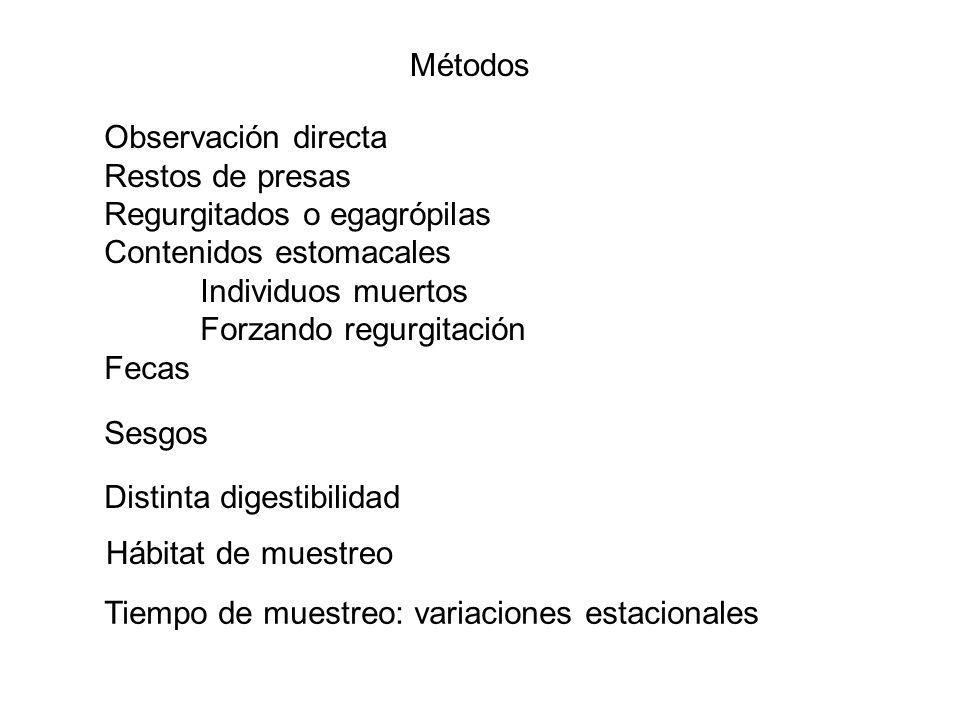Métodos Observación directa. Restos de presas. Regurgitados o egagrópilas. Contenidos estomacales.
