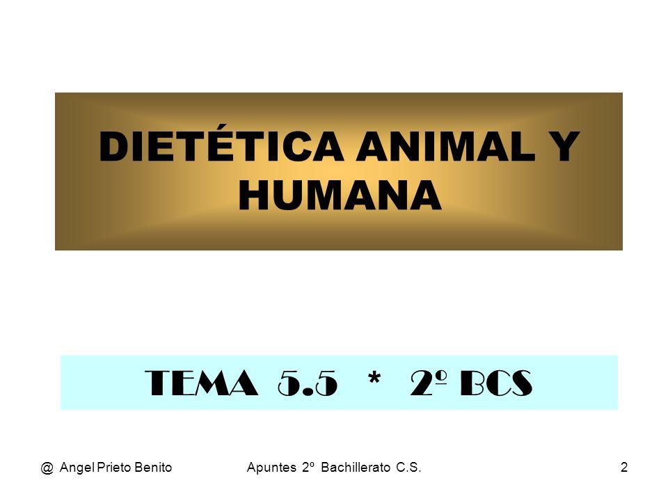 DIETÉTICA ANIMAL Y HUMANA