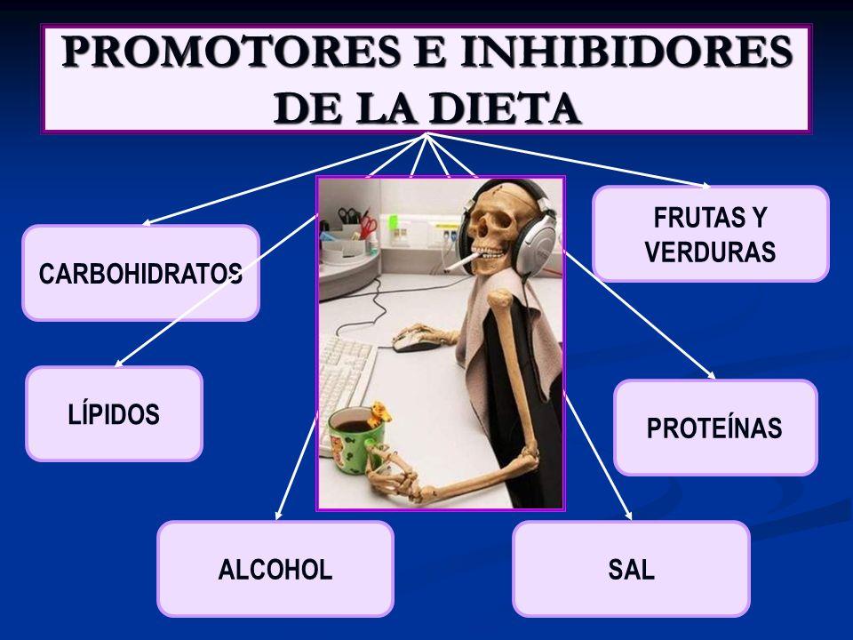 PROMOTORES E INHIBIDORES DE LA DIETA