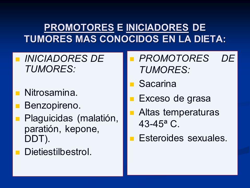 PROMOTORES E INICIADORES DE TUMORES MAS CONOCIDOS EN LA DIETA: