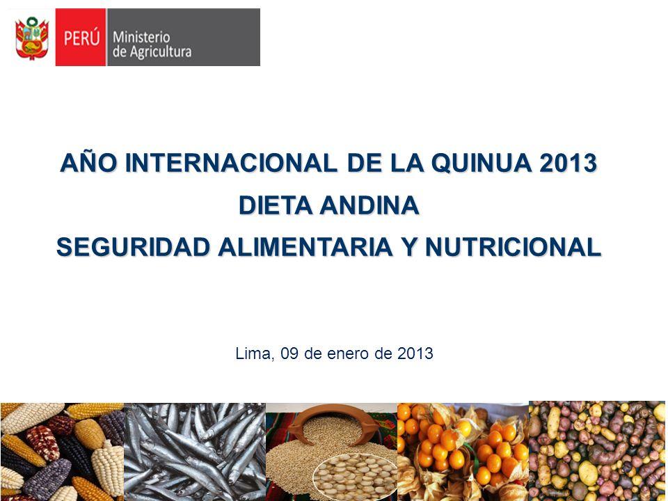 AÑO INTERNACIONAL DE LA QUINUA 2013 DIETA ANDINA