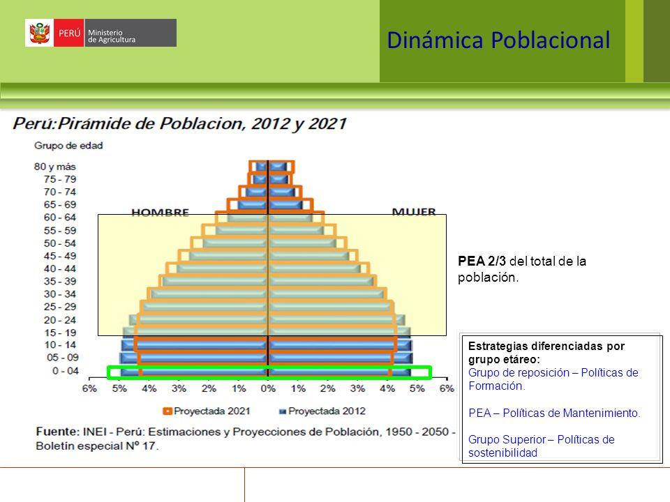 Dinámica Poblacional PEA 2/3 del total de la población.