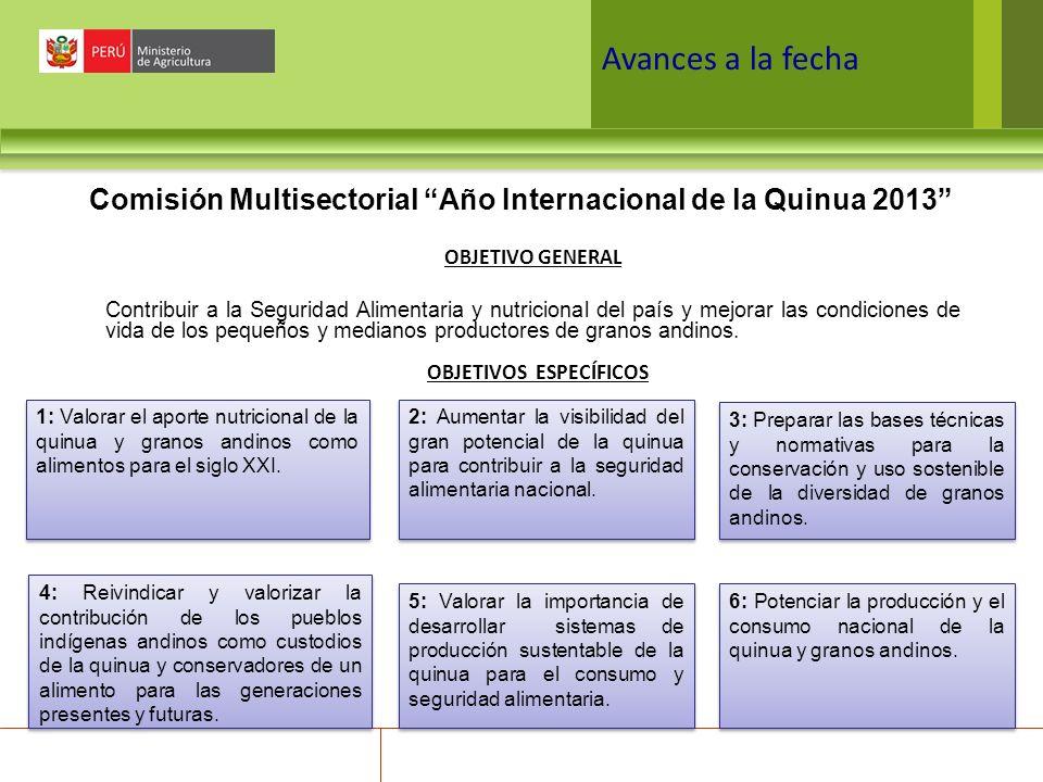 Avances a la fecha Comisión Multisectorial Año Internacional de la Quinua 2013 OBJETIVO GENERAL.